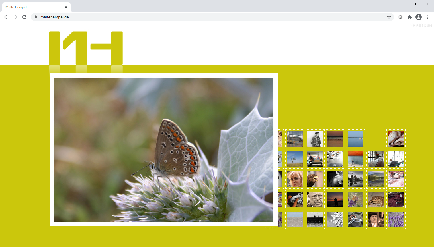 Neues Logo, neue Website ;-)